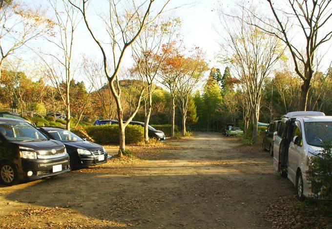 柿山田オートキャンプガーデンのサイト D