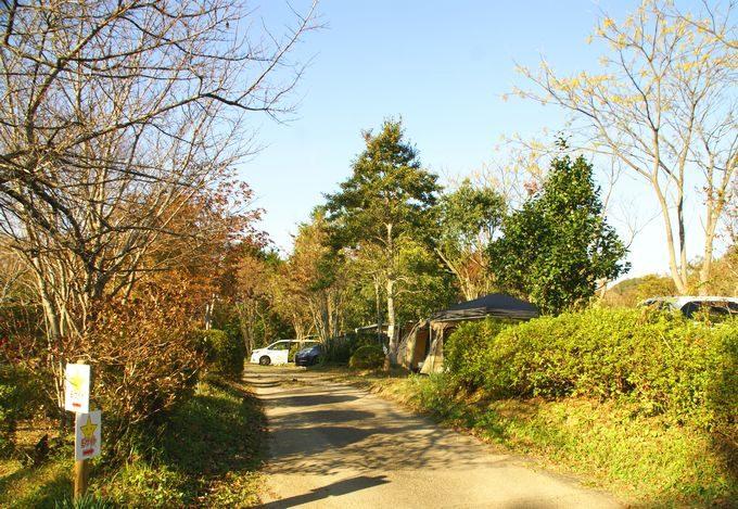 柿山田オートキャンプガーデンのサイト E