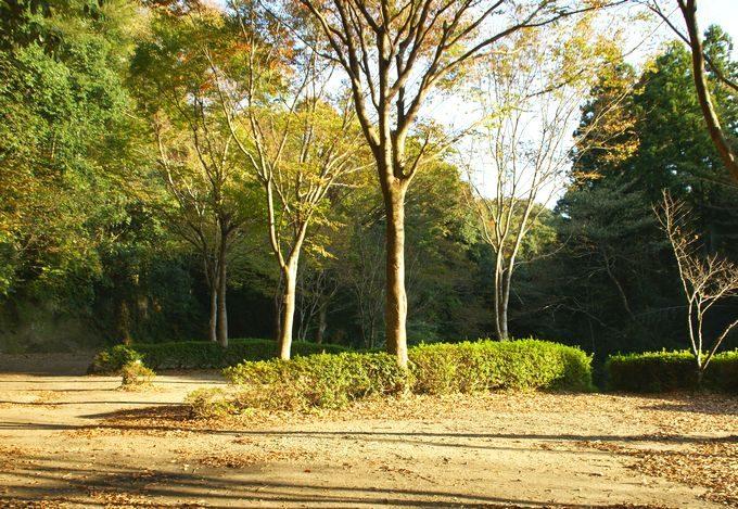 柿山田オートキャンプガーデンのリバーサイトの区画