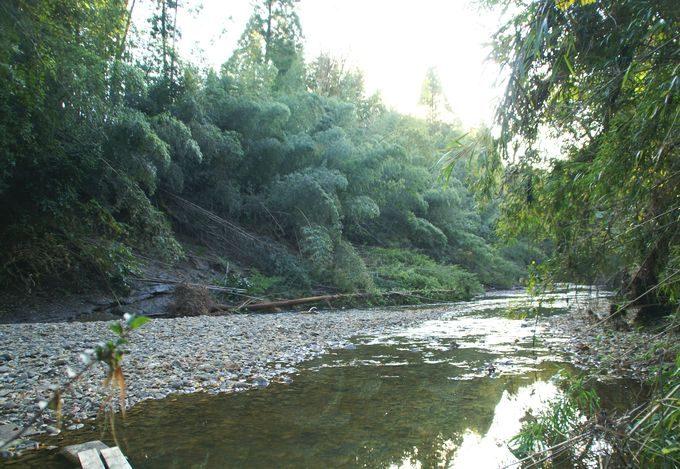 柿山田オートキャンプガーデンのリバーサイトの川
