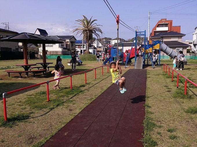 勝浦の公園でターザンロープ