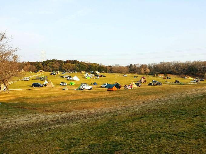 森のまきばオートキャンプ場のフリーサイト(中央)