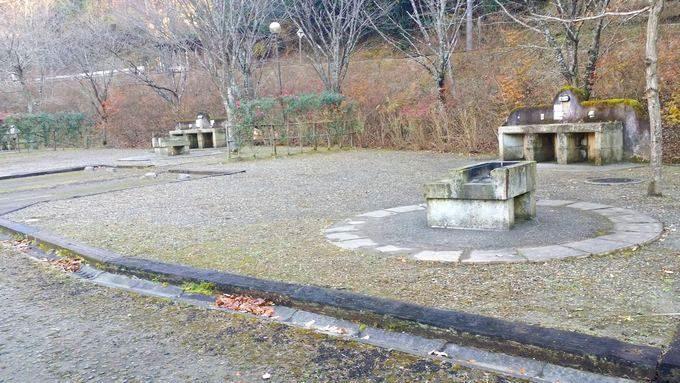 清和県民の森 オートキャンプ場の区画サイト