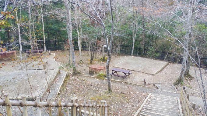 清和県民の森 キャンプ場 奥のサイト