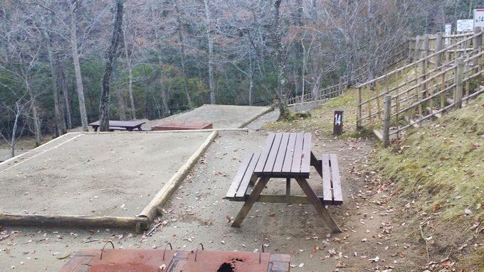 清和県民の森 キャンプ場 奥のサイトは高低差がある
