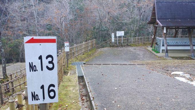 清和県民の森 キャンプ場 奥のサイトの中央通り