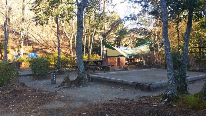 清和県民の森 キャンプ場 手前のサイトの雰囲気 その2