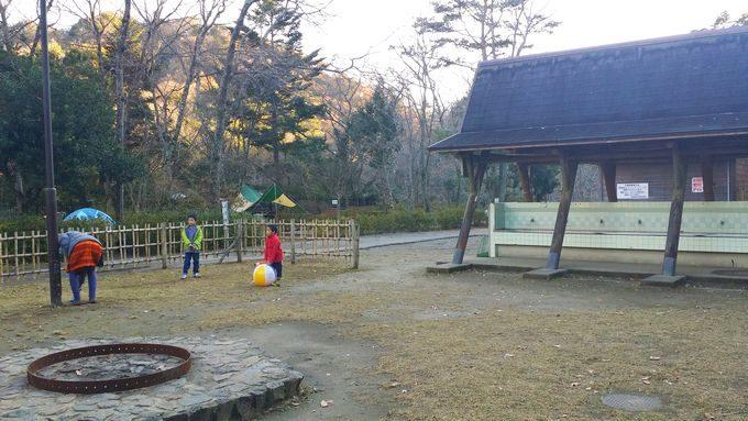 清和県民の森 キャンプ場 手前のサイトの広場