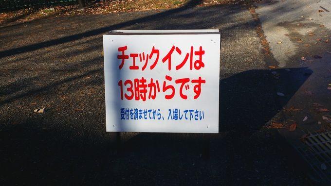 清和県民の森のチェックインは13時から