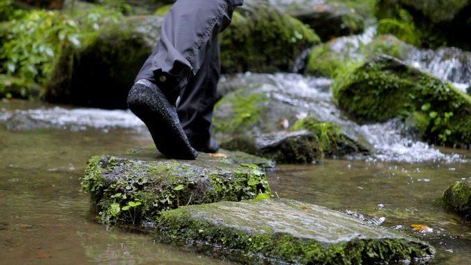 スキナーズ(SKINNERS)で川を散歩