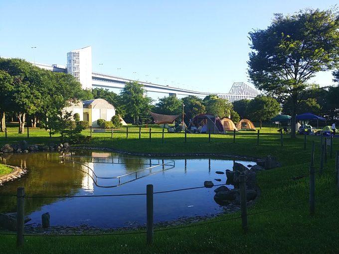 若洲公園キャンプ場の雰囲気 (ゲートブリッジ)