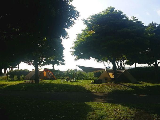 キャンプ場での朝