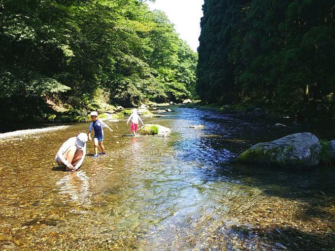 西富士オートキャンプ場の芝川で川遊び