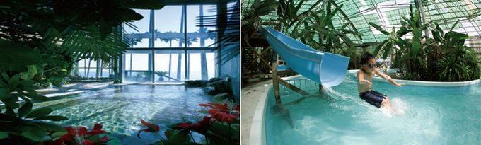 白浜フラワーパークのプールと温泉