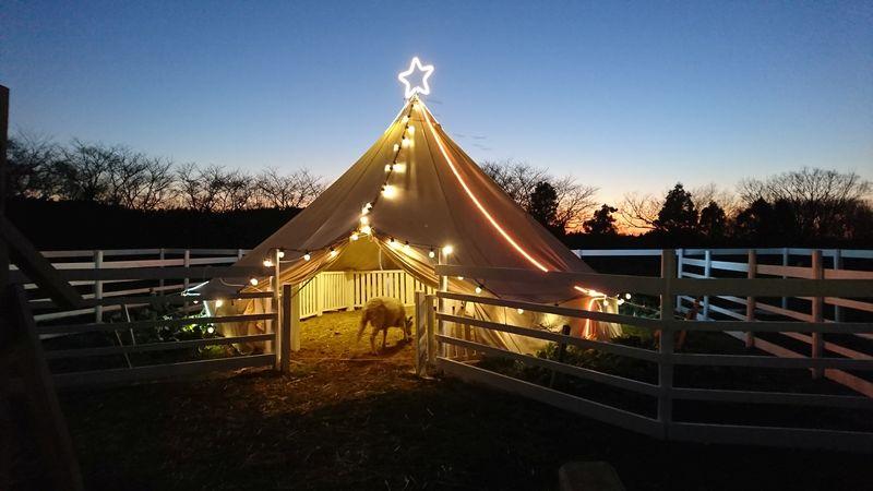 成田ゆめ牧場のヤギさん用のテント