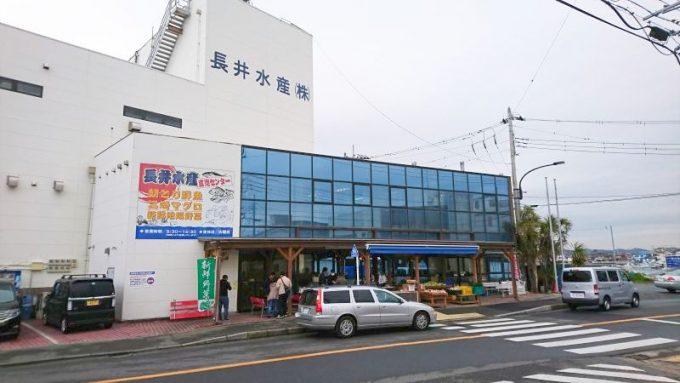 三浦半島 長井水産