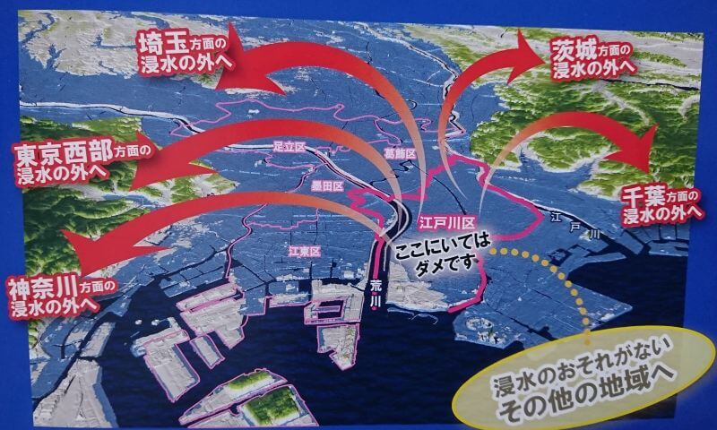 江戸川区のハザードマップ