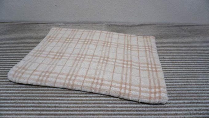 タオル生地の毛布 (綿100%)