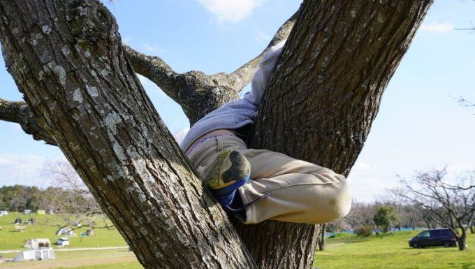 木登りで足を挟む(詳細)