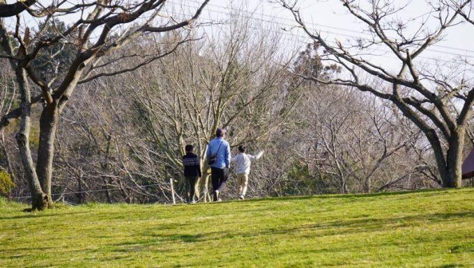 森のまきばで子供と散歩