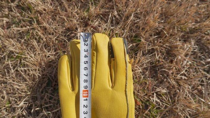 マルチグローブ カッコ(cacco)指の長さ