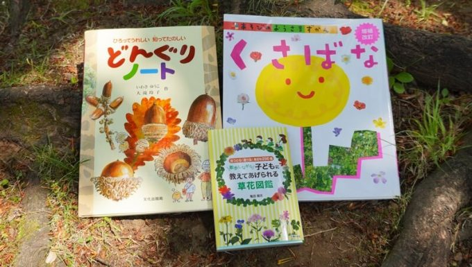子供向け草花図鑑