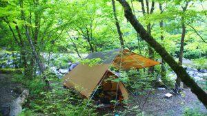 第9営 道志の森キャンプ場 「水遊び天国」と「聖地の仲間たち」