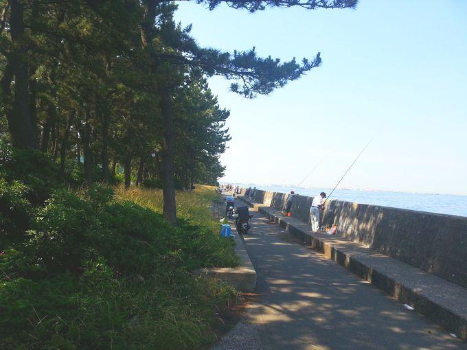 福浦岸壁の様子1