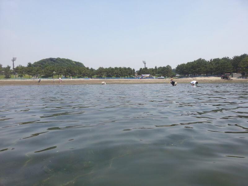 2019年6月6日 海の公園で潮干狩り